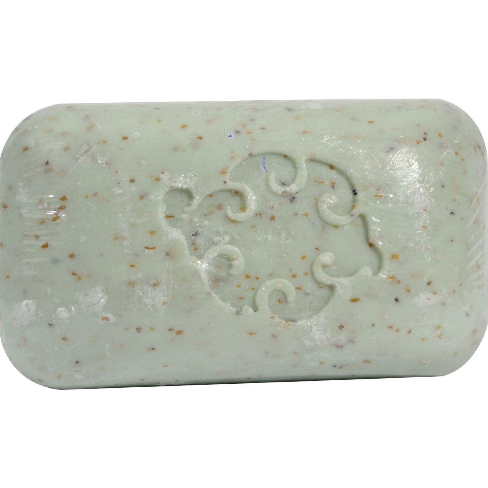 Baudelaire Hand Soap Loofa Mint - 5 oz