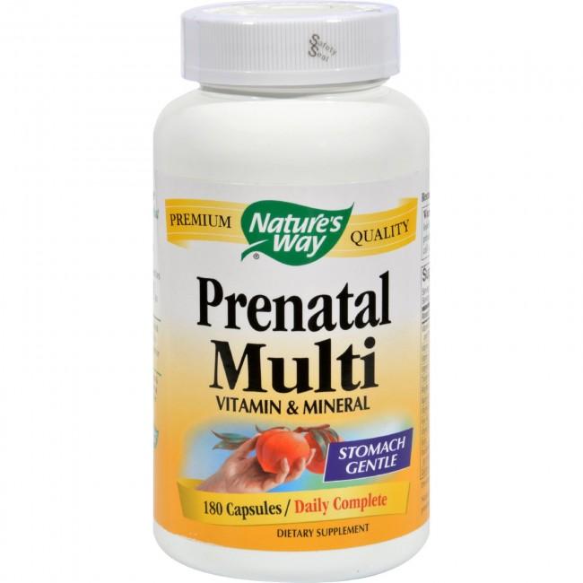 Nature S Way Prenatal Multi